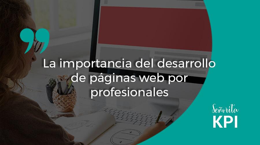 La importancia del desarrollo de páginas web por profesionales